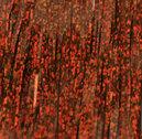Bauer Pike Flash Copper